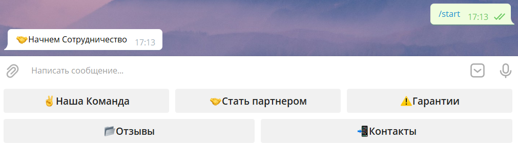 Pleer bot в Телеграмм начало работы